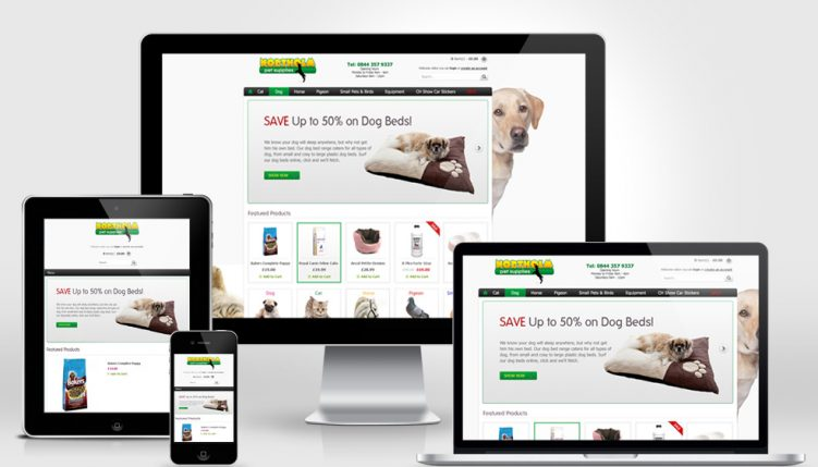 Our beautiful, responsive websites adapt to any format – and we can SEO them!