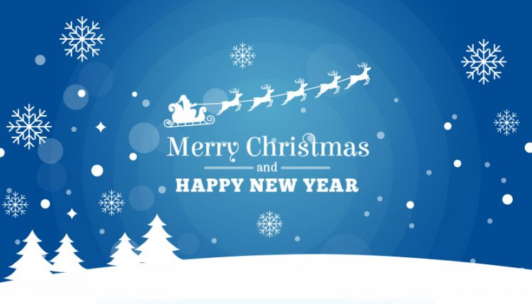 A Merry Christmas and a Happy new Year from the Team at Websmart!